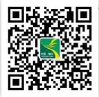 第四届最美银川人评选活动