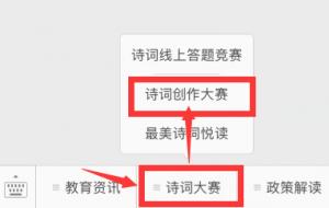我的中国梦青春诗词创作大赛