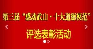 第三届感动武山十大道德模范网络投票方法